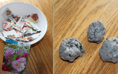 Recycled Paper Seed Bombs